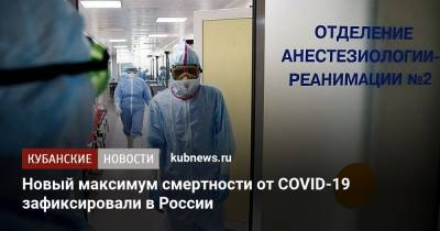 Новый максимум смертности от COVID-19 зафиксировали в России