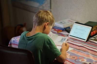 Школьников не будут переводить на удаленку после каникул