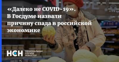 «Далеко не COVID-19». В Госдуме назвали причину спада в российской экономике