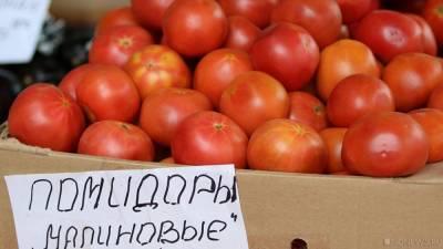 В Челябинск завезли 20 тонн томатов, зараженных опасным вредителем