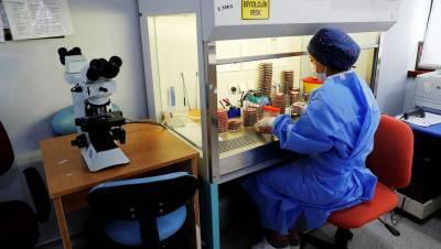 В Турции за сутки от коронавируса скончалось рекордное число человек