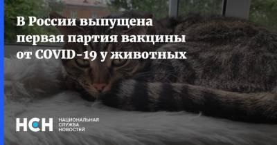 В России выпущена первая партия вакцины от COVID-19 у животных