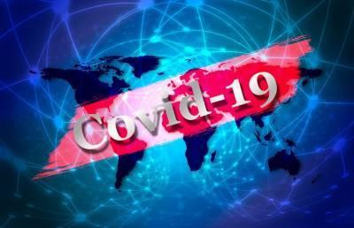 Судьба COVID-сертификатов решится 25 мая