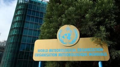 ООН: пандемия не замедлила темпов климатических изменений