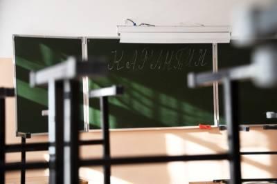 На дистанционное обучение из-за карантина переведены 67 классов в школах Красноярска